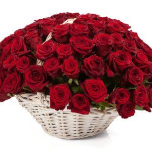 101 роза красного цвета в корзине