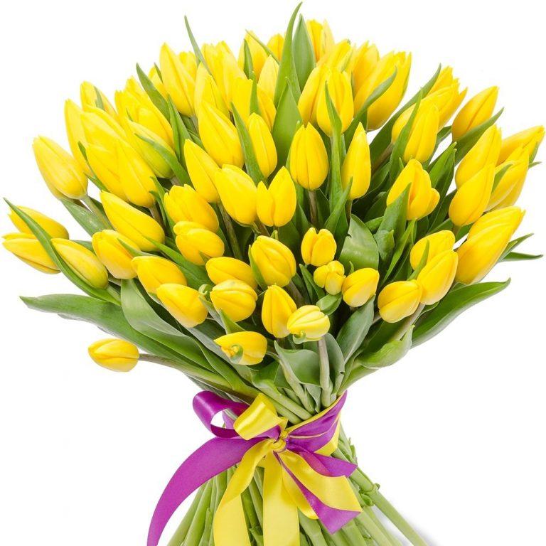 Букет из 101 тюльпана желтого цвета
