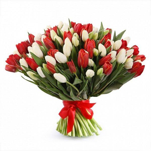 Букет из тюльпанов красного и белого цвета с подарочной лентой