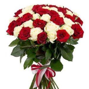 Микс 51 розы красно-белого цвета