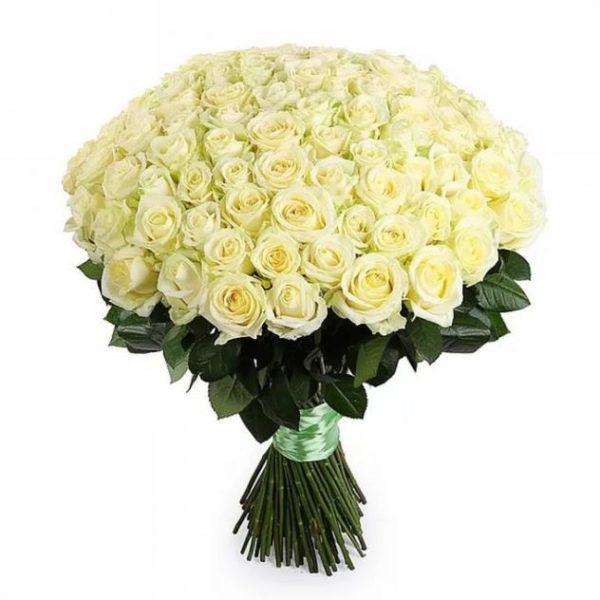 Букет из 101 розы белого цвета