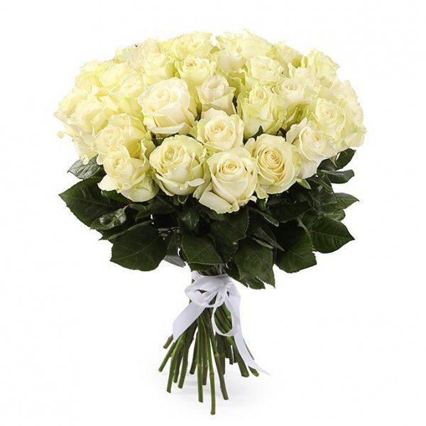 Букет из 25 роз белого цвета