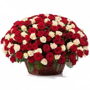 251 роза красно-белого цвета в корзине
