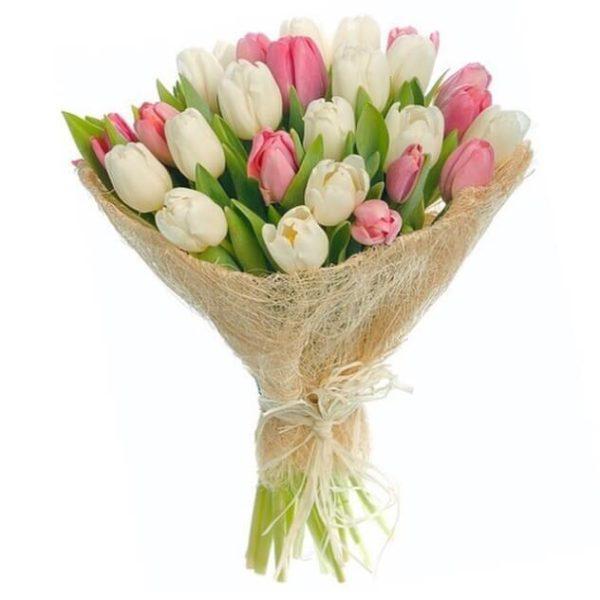 Тюльпаны белого и розового цвета в обертке
