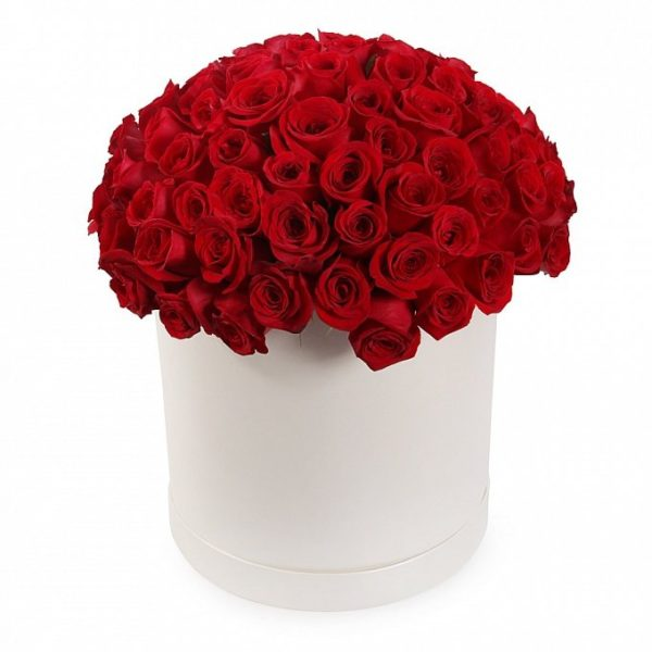 51 роза ярко-красного цвета в коробке