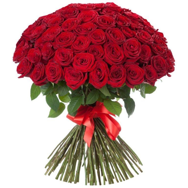 Букет из 51 розы Red Naomi красного цвета