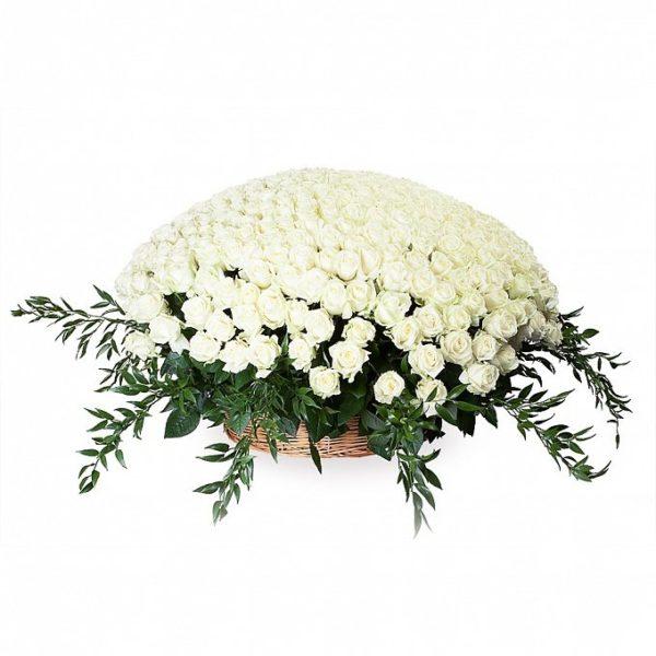501 роза белого цвета в корзине