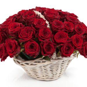 51 роза красного цвета в корзине