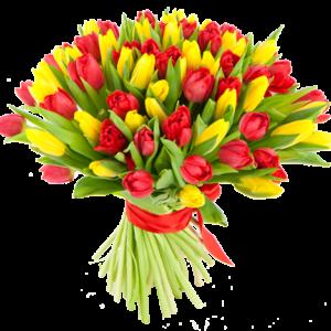 Букет из 51 тюльпана красного и желтого цвета обернутого красной лентой