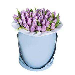 51 тюльпан сиреневого цвета в коробке
