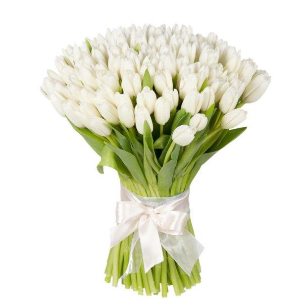 Букет из 75 тюльпанов белого цвета