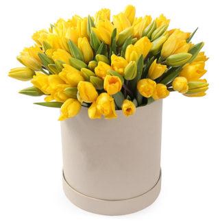 75 тюльпанов желтого цвета в коробке