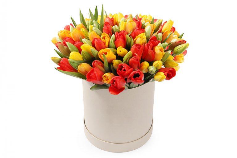 75 тюльпанов в коробке разнообразных цветов