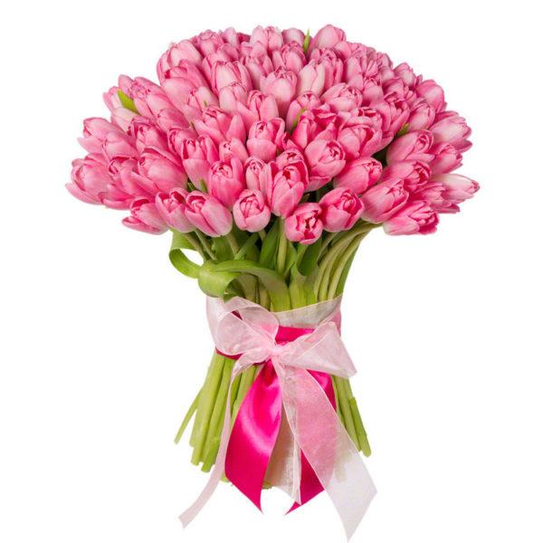 Букет из 75 тюльпанов розового цвета