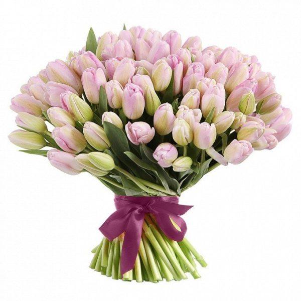 Букет из 81 тюльпана нежно розового цвета