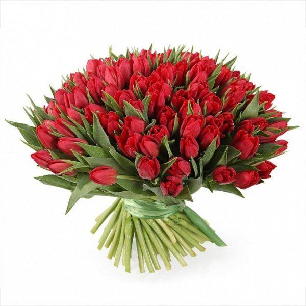 """Букет """"Город страсти"""" 101 тюльпан красного цвета"""