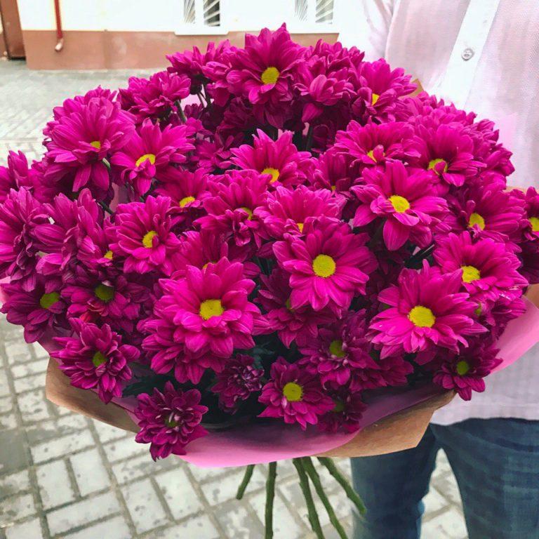 Букет из 15 кустовых хризантем розового цвета