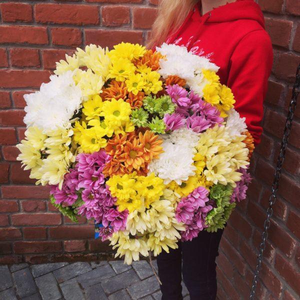 Букет из 25 кустовых хризантем №96