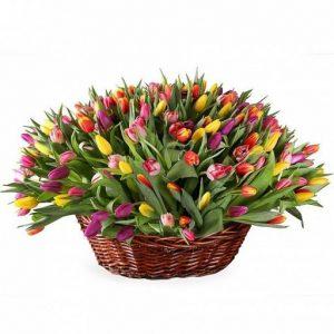 Корзина цветов тюльпанов микс цвета
