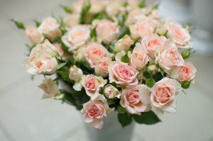 Кустовая роза светло-розового цвета