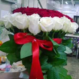 Букет бело-красные розы